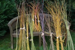 willow kits for dens, obelisks, baskets